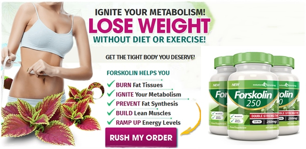 The best weight loss pills 2015